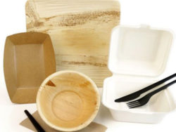 Organic packaging materials: bagasse, palm leaves and bamboo as well as cardboard and paper from sustainably managed forests. Photo: Bionati